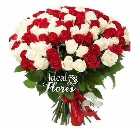 1113 MEGA DUO TOP 50 Rosas