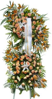 1118 Coroa Estilada Dupla
