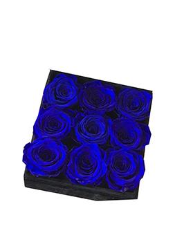 1712 Caixinha  Blue