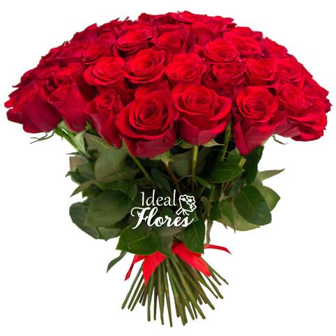 2227 Buquê Especial de 50 Rosas