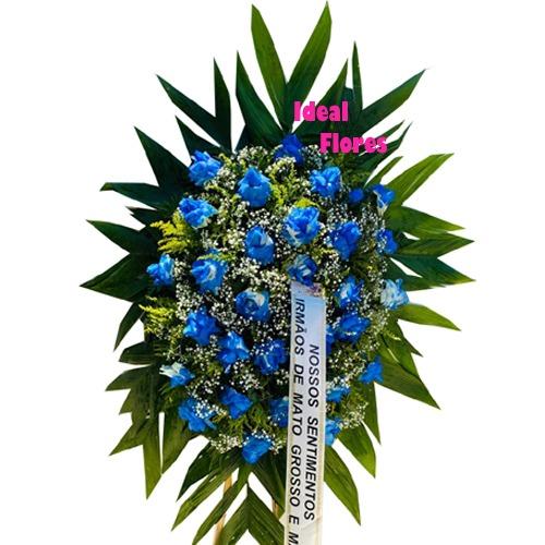 4054 COROA BLUE