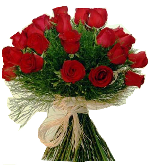 4274 Lindas Rosas em Laço de Ráfia