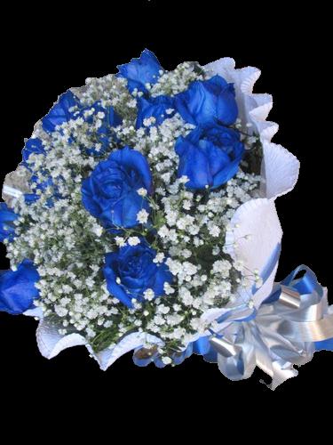 4759 Fantástico Azul