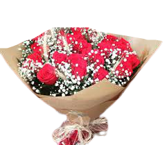 4797 Rosas & Trigos